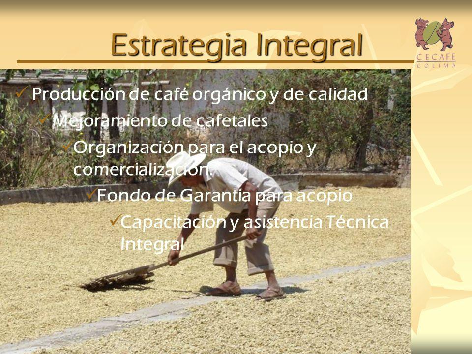 Estrategia Integral Producción de café orgánico y de calidad Mejoramiento de cafetales Organización para el acopio y comercialización. Fondo de Garant