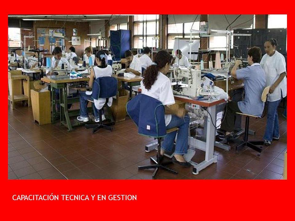 CAPACITACIÓN TECNICA Y EN GESTION