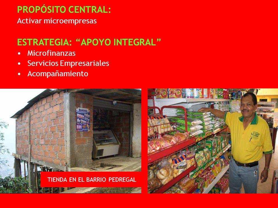 PROPÓSITO CENTRAL: Activar microempresas ESTRATEGIA: APOYO INTEGRAL Microfinanzas Servicios Empresariales Acompañamiento TIENDA EN EL BARRIO PEDREGAL