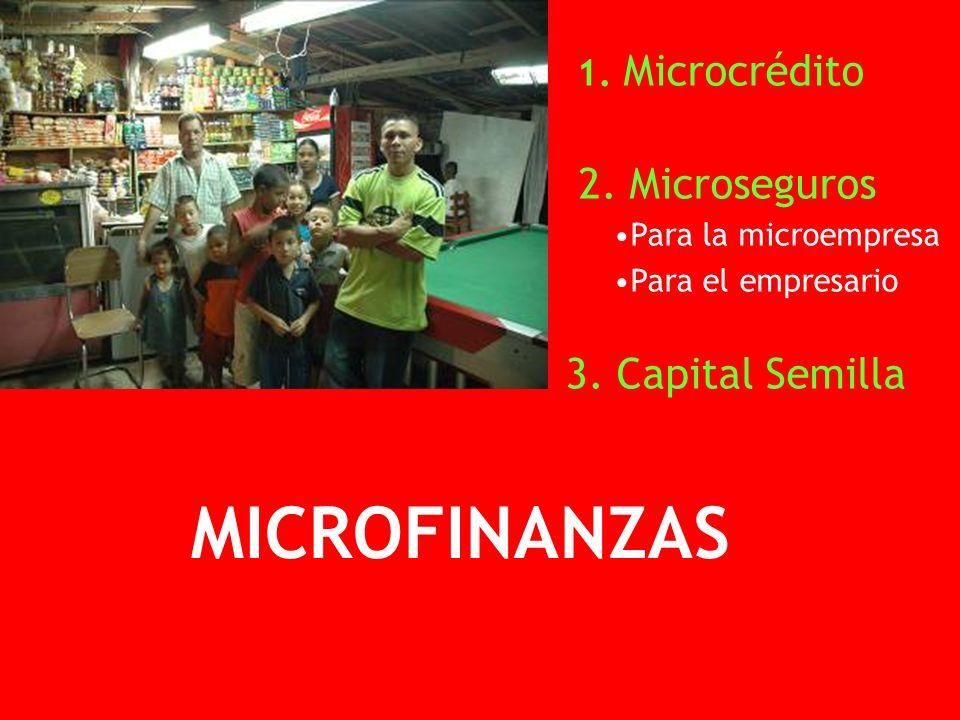 1. Microcrédito 2. Microseguros Para la microempresa Para el empresario 3.