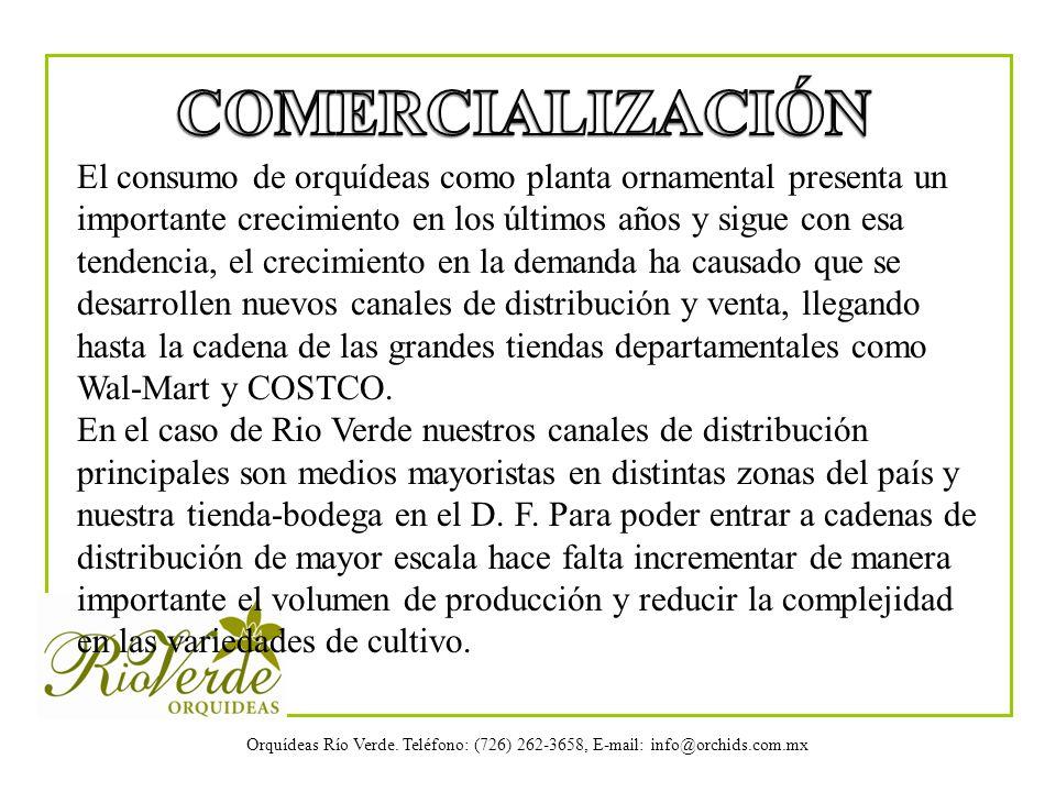 Orquídeas Río Verde. Teléfono: (726) 262-3658, E-mail: info@orchids.com.mx El consumo de orquídeas como planta ornamental presenta un importante creci