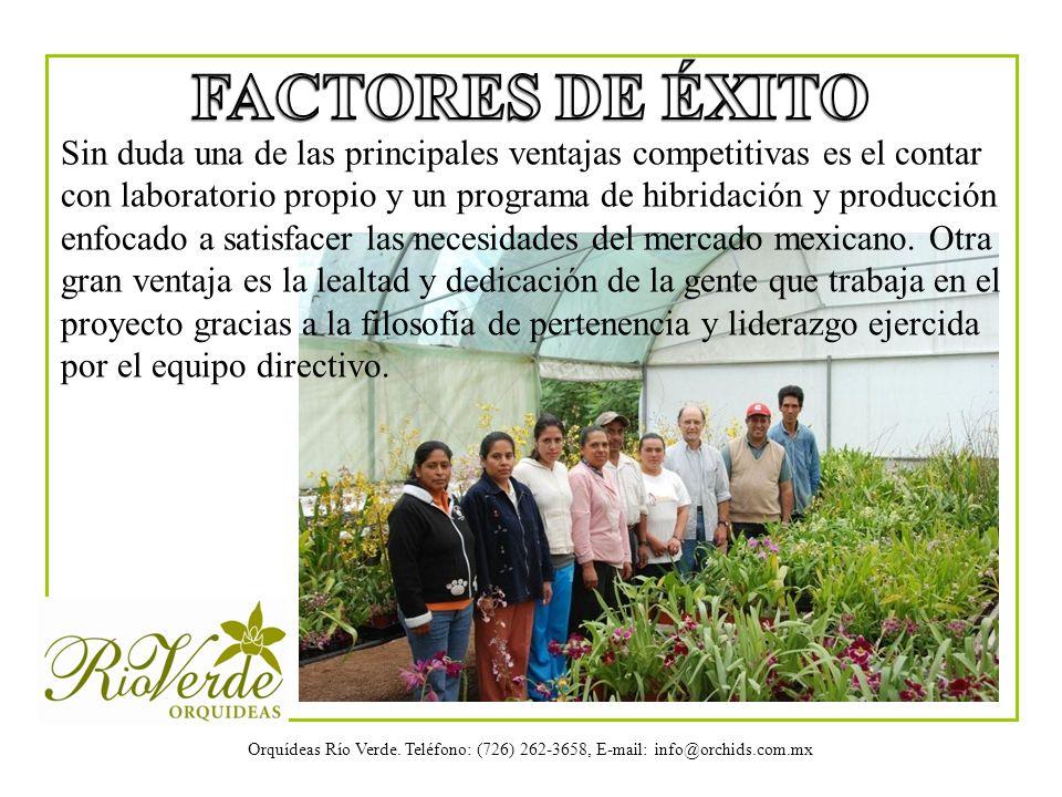 Orquídeas Río Verde. Teléfono: (726) 262-3658, E-mail: info@orchids.com.mx Sin duda una de las principales ventajas competitivas es el contar con labo
