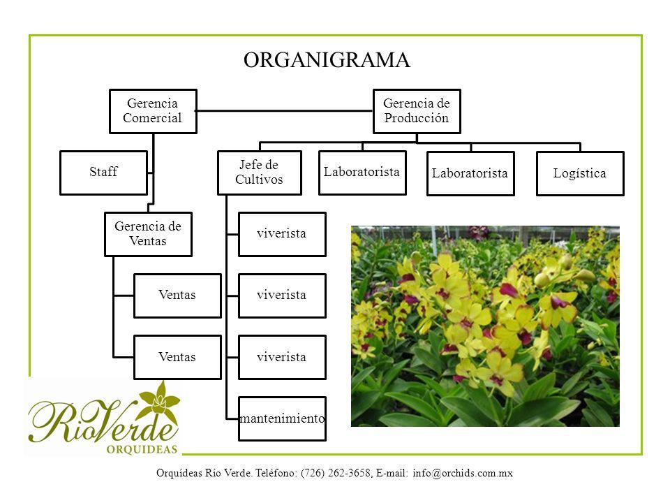 Orquídeas Río Verde. Teléfono: (726) 262-3658, E-mail: info@orchids.com.mx Gerencia Comercial Gerencia de Ventas Ventas Staff Gerencia de Producción J