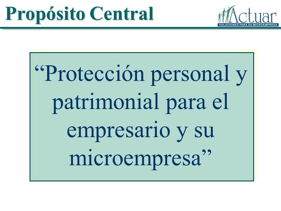 Protección personal y patrimonial para el empresario y su microempresa Propósito Central