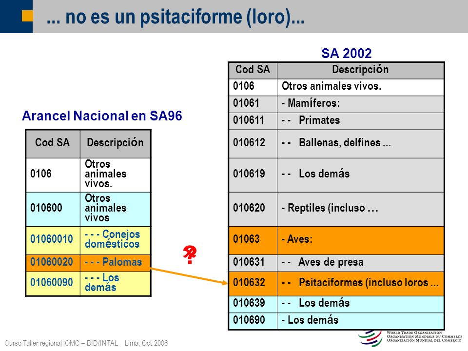 Curso Taller regional OMC – BID/INTAL Lima, Oct.2006... no es un psitaciforme (loro)... Cod SA Descripci ó n 0106Otros animales vivos. 01061 - Mam í f
