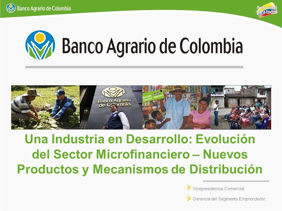 Una Industria en Desarrollo: Evolución del Sector Microfinanciero – Nuevos Productos y Mecanismos de Distribución Vicepresidencia Comercial Gerencia d