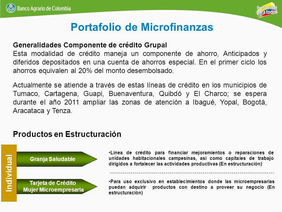 Portafolio de Microfinanzas Tarjeta de Crédito Mujer Microempresaria Individual Para uso exclusivo en establecimientos donde las microempresarias pued