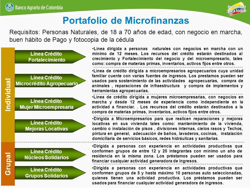 Portafolio de Microfinanzas Individual Línea Crédito Mejoras Locativas Dirigida a Microempresarios para que realicen reparaciones y mejoras locativas