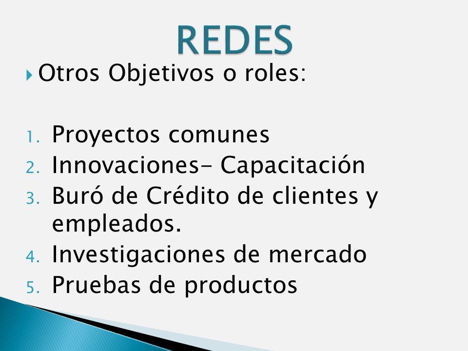 Otros Objetivos o roles: 1. Proyectos comunes 2. Innovaciones- Capacitación 3.