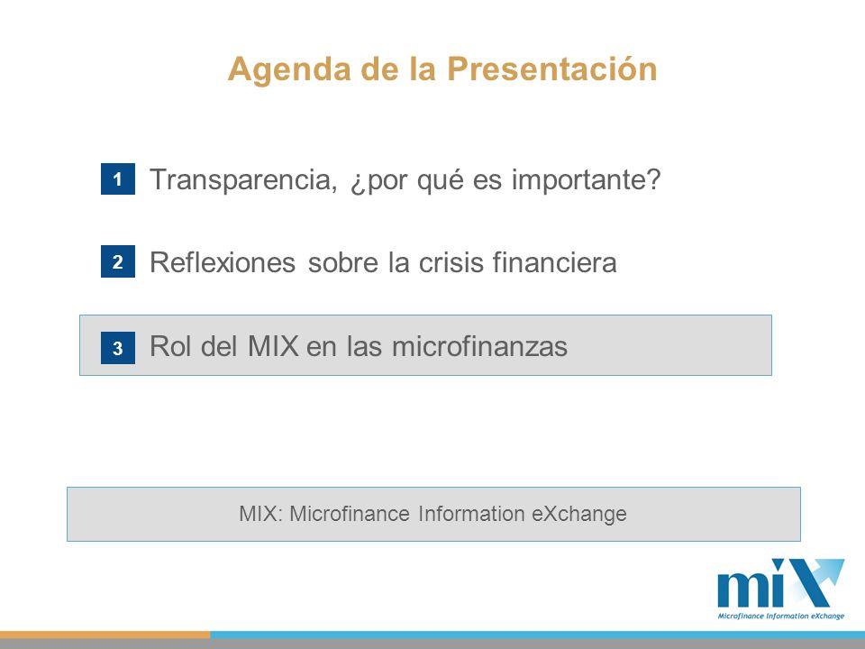 Transparencia, ¿por qué es importante? Reflexiones sobre la crisis financiera Rol del MIX en las microfinanzas Agenda de la Presentación 1 2 3 MIX: Mi