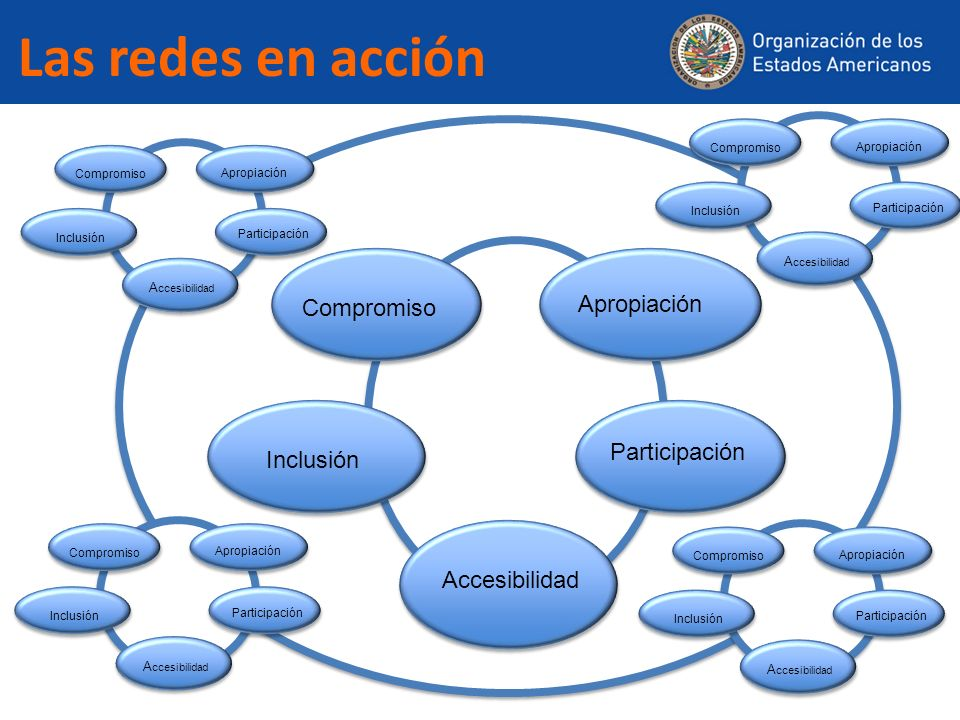 Las redes en acción Compromiso Apropiación Participación Accesibilidad Inclusión Compromiso Apropiación Participación A ccesibilidad Inclusión Comprom