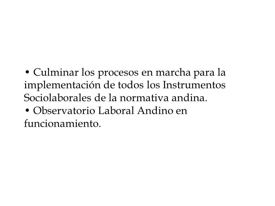 Culminar los procesos en marcha para la implementación de todos los Instrumentos Sociolaborales de la normativa andina.