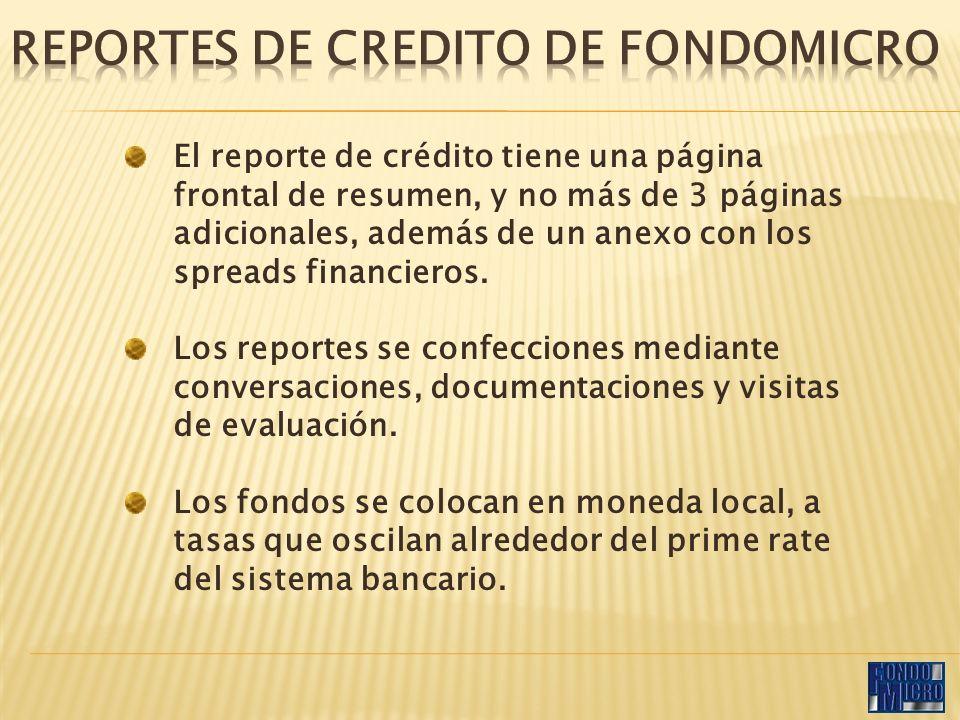 El reporte de crédito tiene una página frontal de resumen, y no más de 3 páginas adicionales, además de un anexo con los spreads financieros.