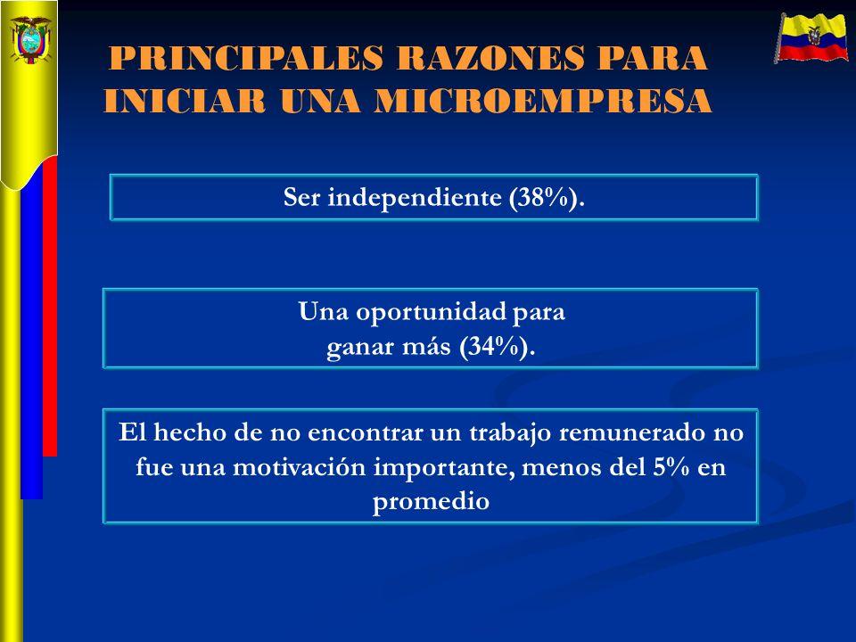 PRINCIPALES RAZONES PARA INICIAR UNA MICROEMPRESA Ser independiente (38%). Una oportunidad para ganar más (34%). El hecho de no encontrar un trabajo r