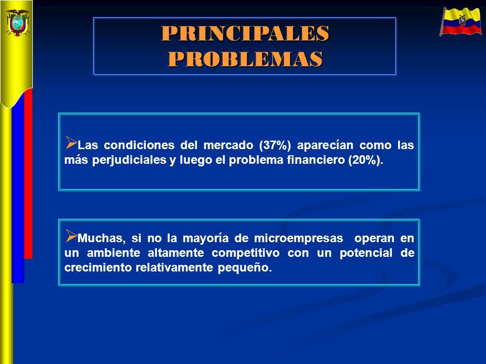 PRINCIPALES PROBLEMAS Muchas, si no la mayoría de microempresas operan en un ambiente altamente competitivo con un potencial de crecimiento relativame