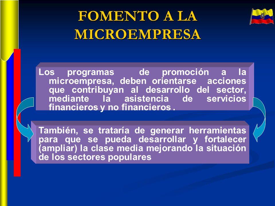 Los programas de promoción a la microempresa, deben orientarse acciones que contribuyan al desarrollo del sector, mediante la asistencia de servicios