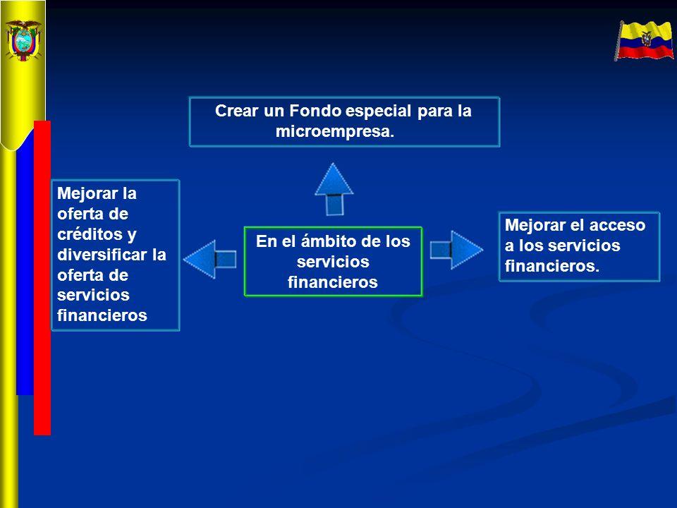 En el ámbito de los servicios financieros Crear un Fondo especial para la microempresa. Mejorar el acceso a los servicios financieros. Mejorar la ofer