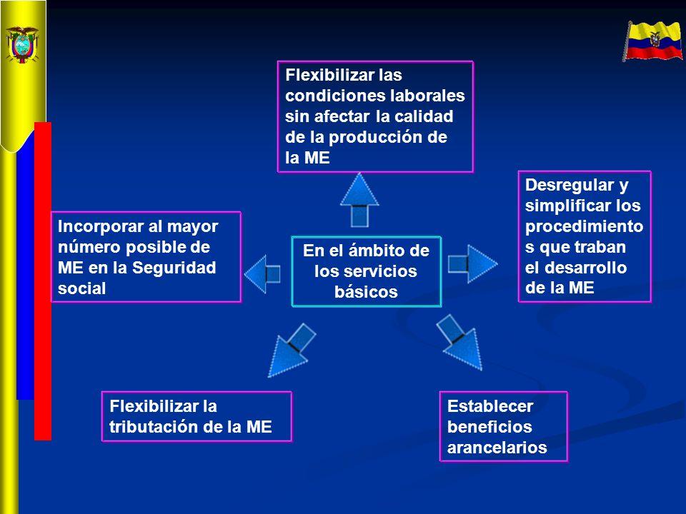 En el ámbito de los servicios básicos Incorporar al mayor número posible de ME en la Seguridad social Flexibilizar las condiciones laborales sin afect