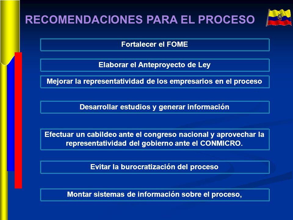 RECOMENDACIONES PARA EL PROCESO Fortalecer el FOME Elaborar el Anteproyecto de Ley Mejorar la representatividad de los empresarios en el proceso Desar