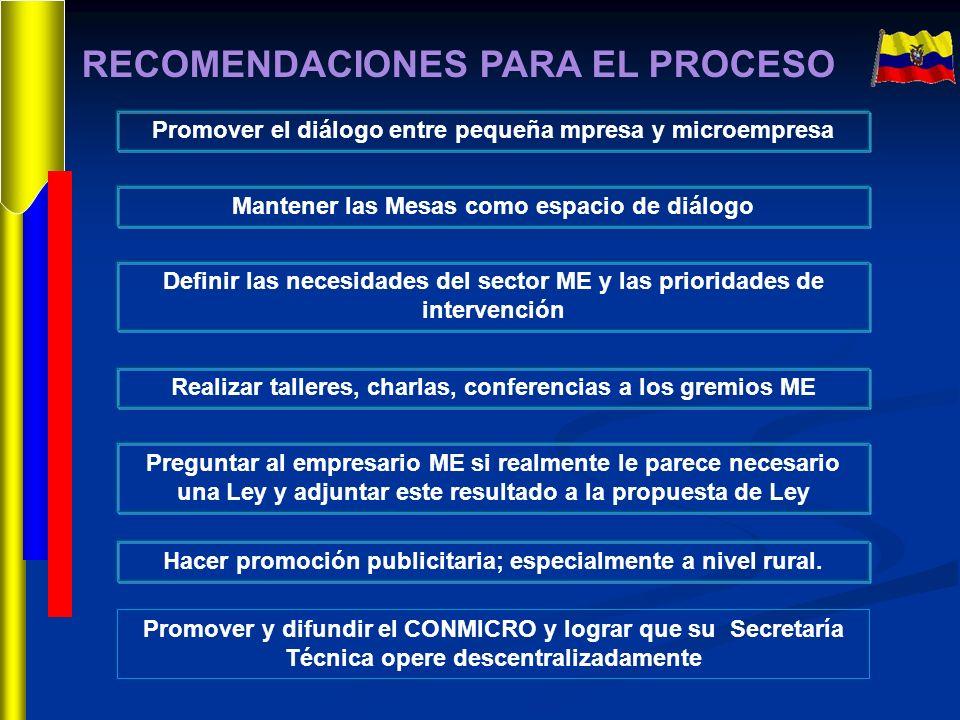 RECOMENDACIONES PARA EL PROCESO Promover el diálogo entre pequeña mpresa y microempresa Mantener las Mesas como espacio de diálogo Definir las necesid