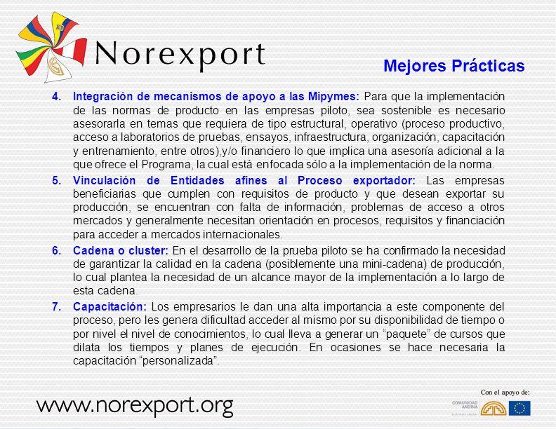 4.Integración de mecanismos de apoyo a las Mipymes: Para que la implementación de las normas de producto en las empresas piloto, sea sostenible es nec