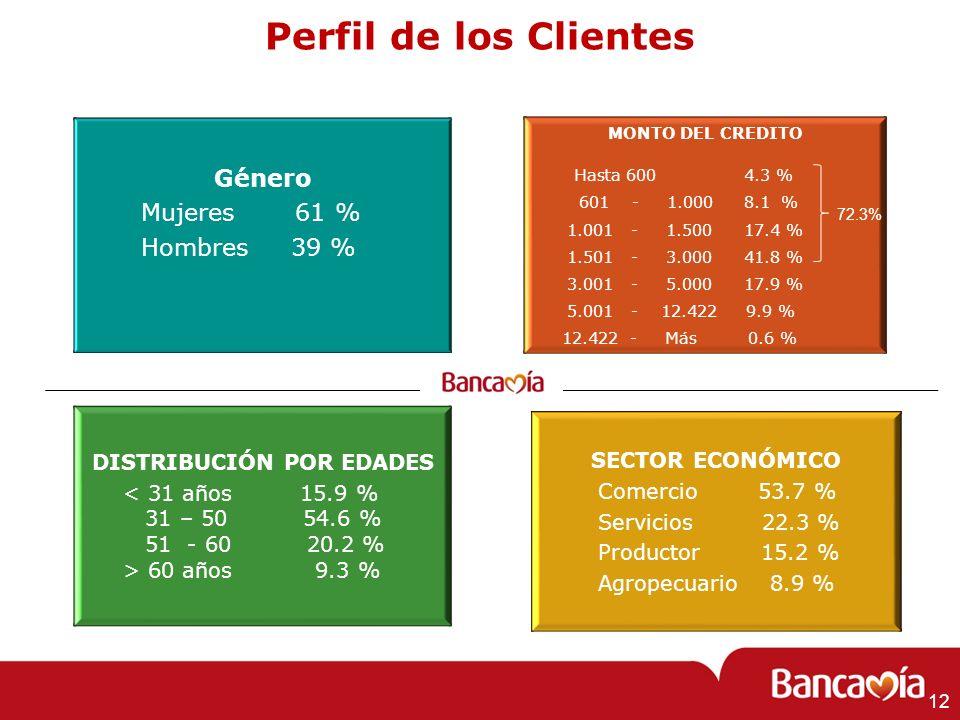 Perfil de los Clientes DISTRIBUCIÓN POR EDADES < 31 años 15.9 % 31 – 50 54.6 % 51 - 60 20.2 % > 60 años 9.3 % SECTOR ECONÓMICO Comercio 53.7 % Servici