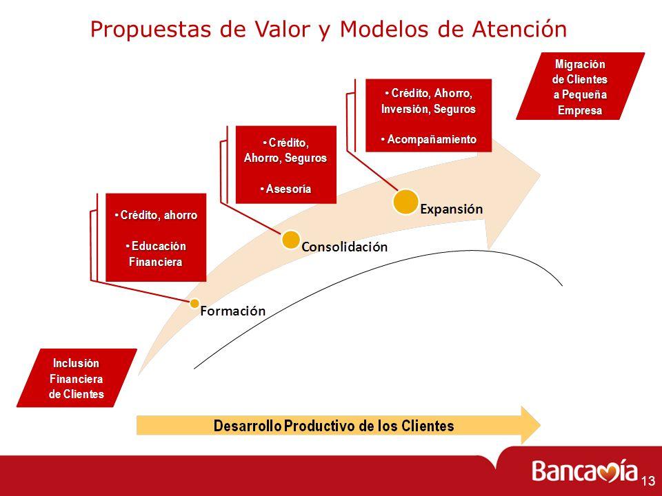 Propuestas de Valor y Modelos de Atención 13