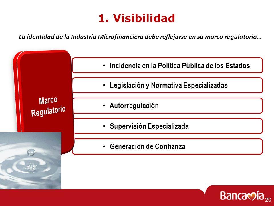 20 1. Visibilidad Supervisión Especializada Incidencia en la Política Pública de los Estados Legislación y Normativa Especializadas Autorregulación Ge