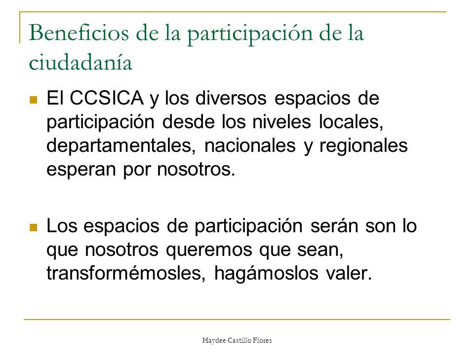Haydee Castillo Flores Beneficios de la participación de la ciudadanía El CCSICA y los diversos espacios de participación desde los niveles locales, d