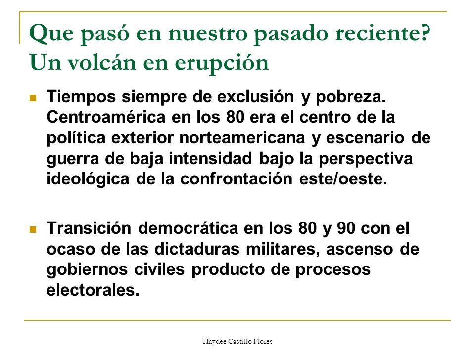 Haydee Castillo Flores Incidencia política.