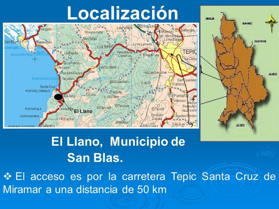 Localización El acceso es por la carretera Tepic Santa Cruz de Miramar a una distancia de 50 km El Llano El Llano, Municipio de San Blas.