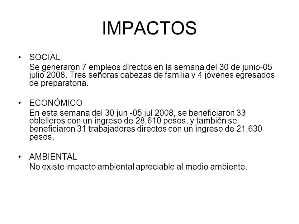 IMPACTOS SOCIAL Se generaron 7 empleos directos en la semana del 30 de junio-05 julio 2008. Tres señoras cabezas de familia y 4 jóvenes egresados de p