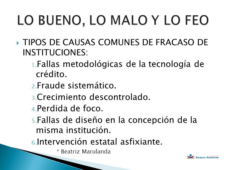 TIPOS DE CAUSAS COMUNES DE FRACASO DE INSTITUCIONES: 1. Fallas metodológicas de la tecnología de crédito. 2. Fraude sistemático. 3. Crecimiento descon