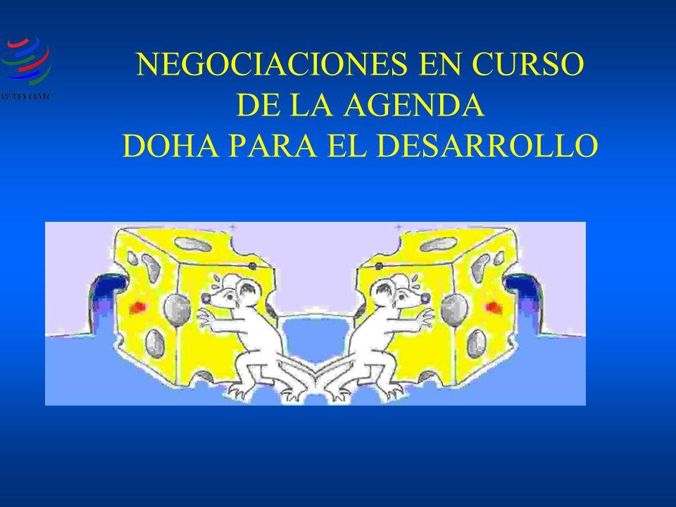 NEGOCIACIONES EN CURSO DE LA AGENDA DOHA PARA EL DESARROLLO