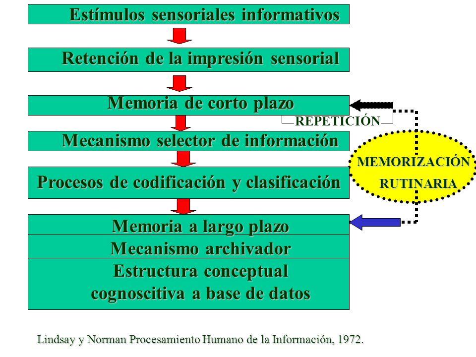 Retención de la impresión sensorial Memoria de corto plazo REPETICIÓN Mecanismo selector de información MEMORIZACIÓN MEMORIZACIÓN Procesos de codifica
