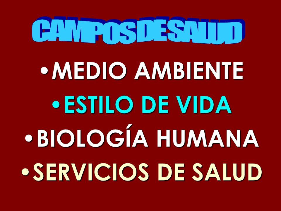 MEDIO AMBIENTE MEDIO AMBIENTE ESTILO DE VIDA ESTILO DE VIDA BIOLOGÍA HUMANA BIOLOGÍA HUMANA SERVICIOS DE SALUD SERVICIOS DE SALUD