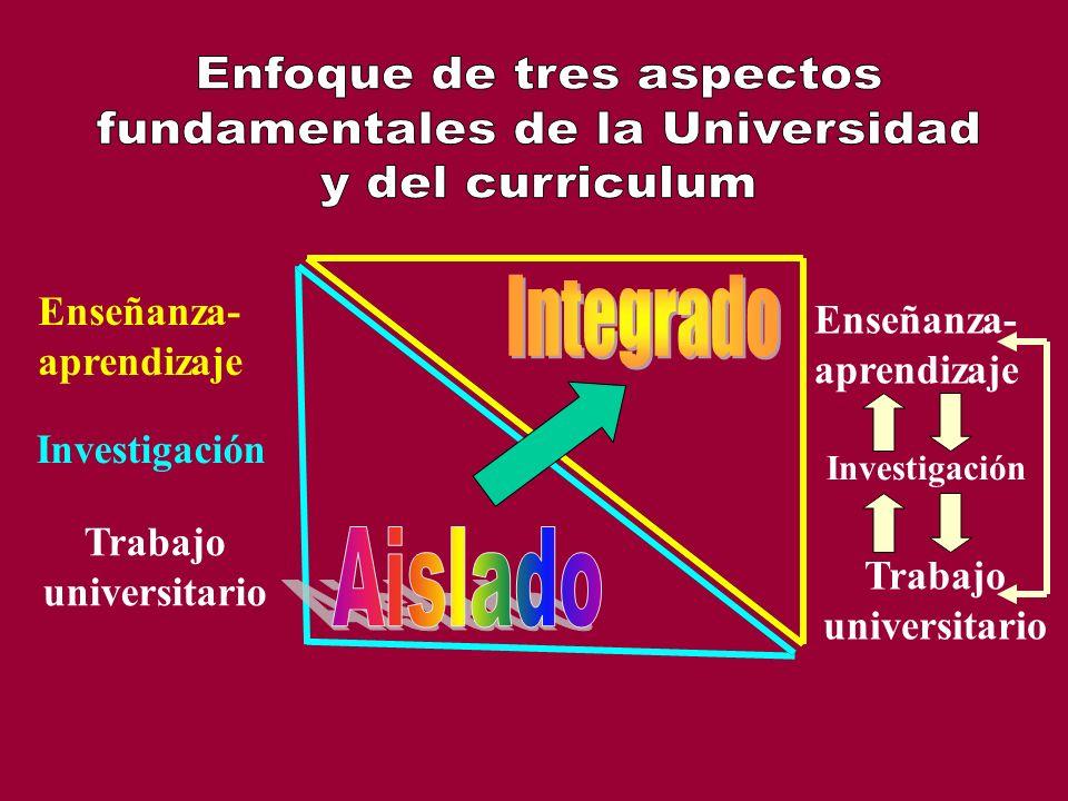 Enseñanza- aprendizaje Enseñanza- aprendizaje Investigación Trabajo universitario Trabajo universitario