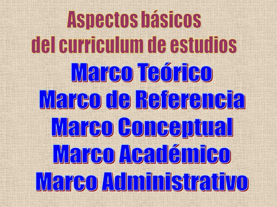 FIJAR LA IMPORTANCIA RESPECTIVA DE LOS DIFERENTES OBJETIVOS Y CONTENIDOS.