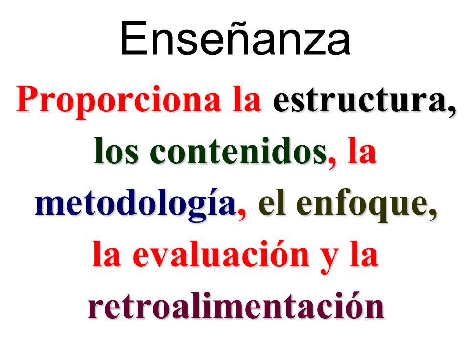 Enseñanza Proporciona la estructura, los contenidos, la metodología, el enfoque, la evaluación y la retroalimentación
