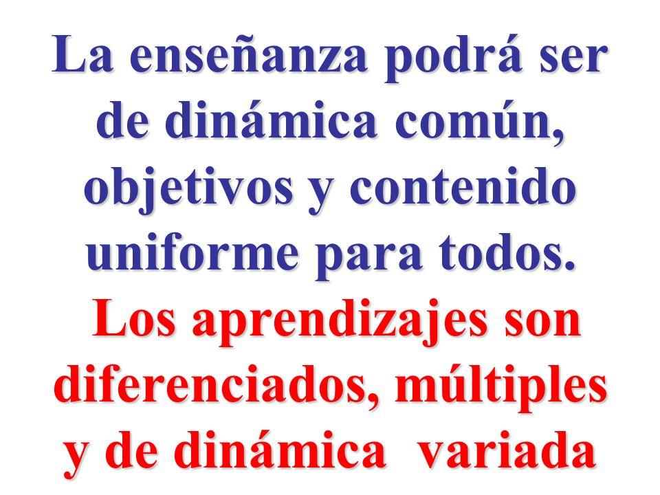 La enseñanza podrá ser de dinámica común, objetivos y contenido uniforme para todos. Los aprendizajes son diferenciados, múltiples Los aprendizajes so