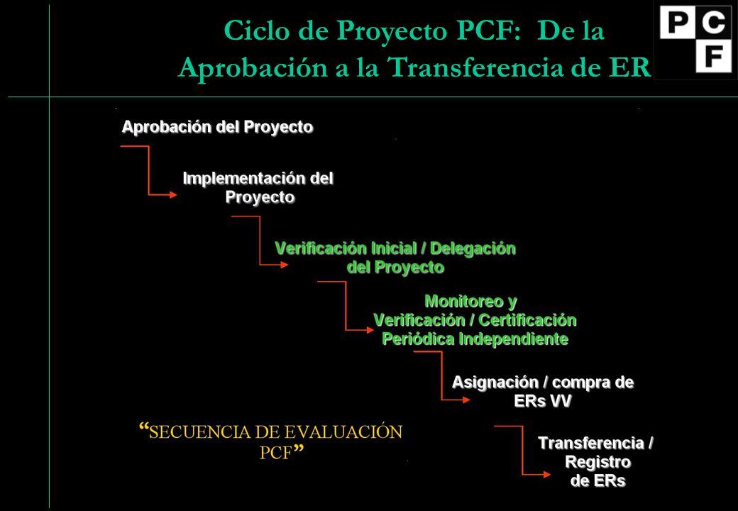 13 Ciclo de Proyecto PCF: De la Aprobación a la Transferencia de ER