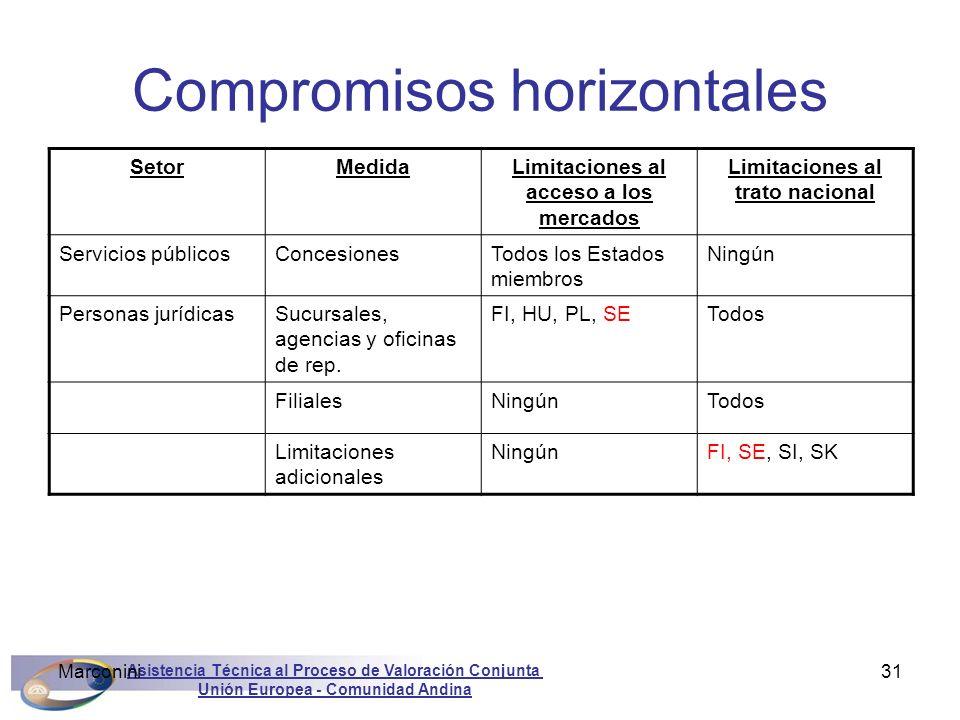 Asistencia Técnica al Proceso de Valoración Conjunta Unión Europea - Comunidad Andina Marconini31 Compromisos horizontales SetorMedidaLimitaciones al