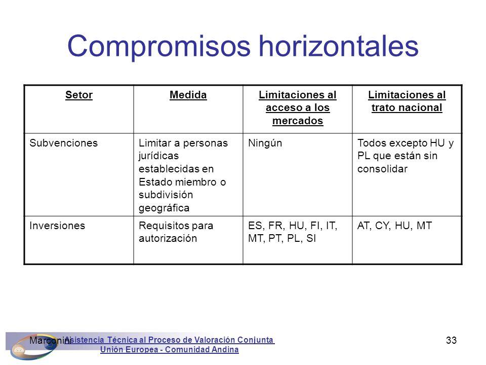 Asistencia Técnica al Proceso de Valoración Conjunta Unión Europea - Comunidad Andina Marconini33 Compromisos horizontales SetorMedidaLimitaciones al