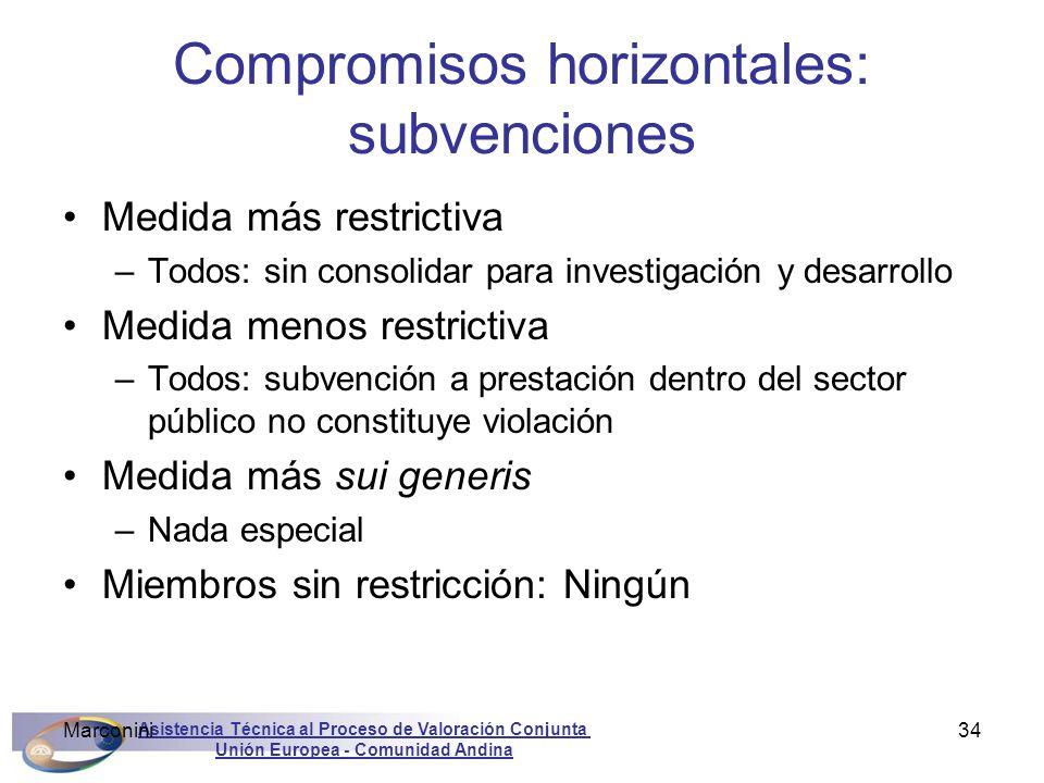 Asistencia Técnica al Proceso de Valoración Conjunta Unión Europea - Comunidad Andina Marconini34 Compromisos horizontales: subvenciones Medida más re