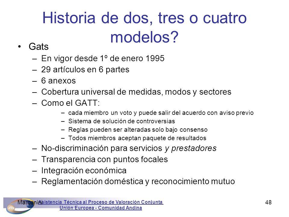 Asistencia Técnica al Proceso de Valoración Conjunta Unión Europea - Comunidad Andina Marconini48 Historia de dos, tres o cuatro modelos? Gats –En vig