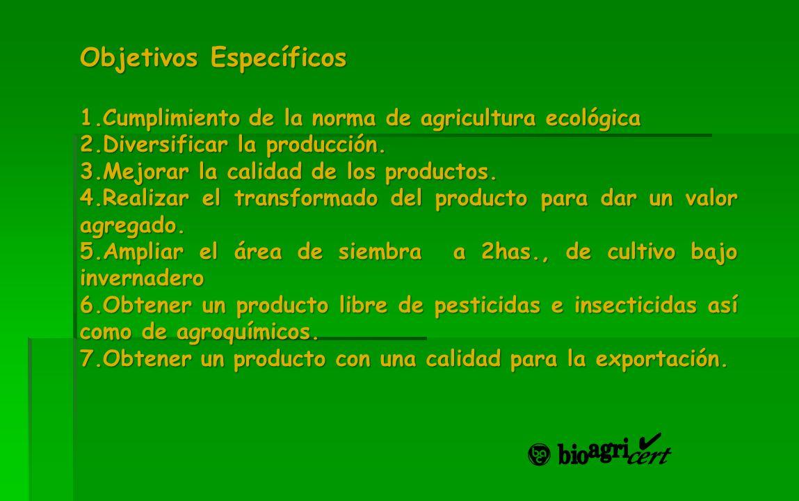 Objetivos Específicos 1.Cumplimiento de la norma de agricultura ecológica 2.Diversificar la producción. 3.Mejorar la calidad de los productos. 4.Reali