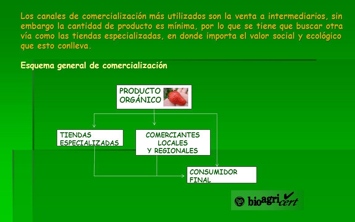 COMERCIANTES LOCALES Y REGIONALES CONSUMIDOR FINAL TIENDAS ESPECIALIZADAS PRODUCTO ORGÁNICO Los canales de comercialización más utilizados son la vent