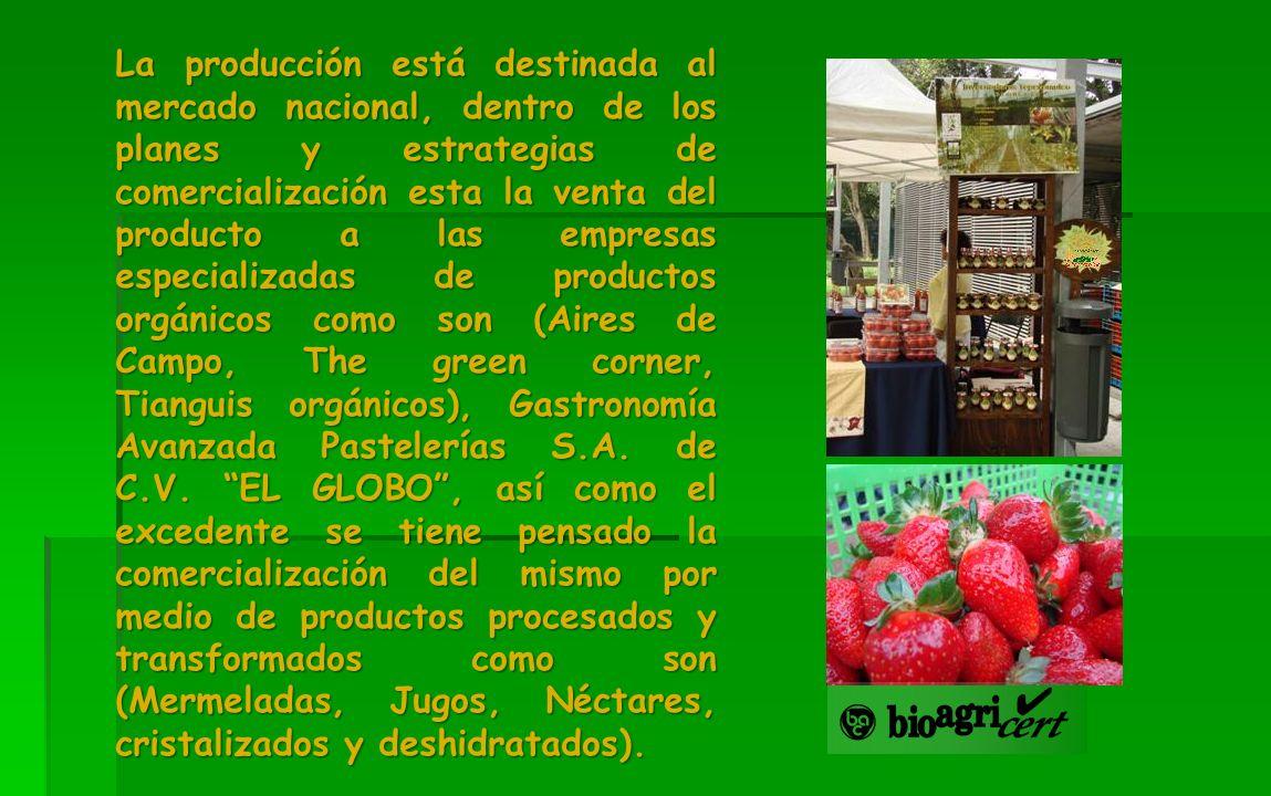 La producción está destinada al mercado nacional, dentro de los planes y estrategias de comercialización esta la venta del producto a las empresas esp