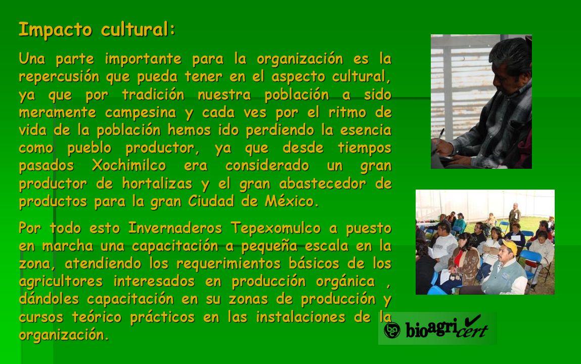 Impacto cultural: Una parte importante para la organización es la repercusión que pueda tener en el aspecto cultural, ya que por tradición nuestra pob