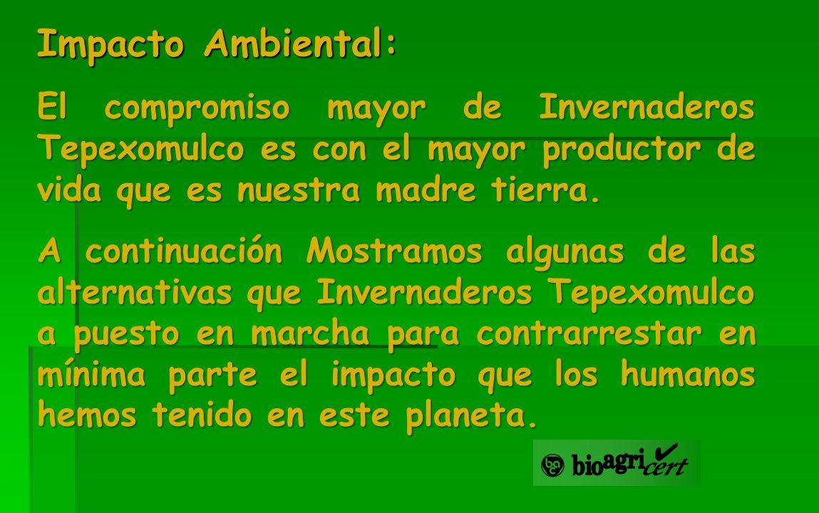 Impacto Ambiental: El compromiso mayor de Invernaderos Tepexomulco es con el mayor productor de vida que es nuestra madre tierra. A continuación Mostr